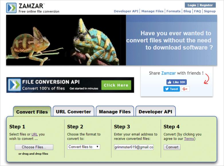 """""""zamzar.com"""" site."""